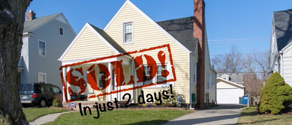 Jody Zink Realtor Home For Sale Toledo Perrysburg Ohio